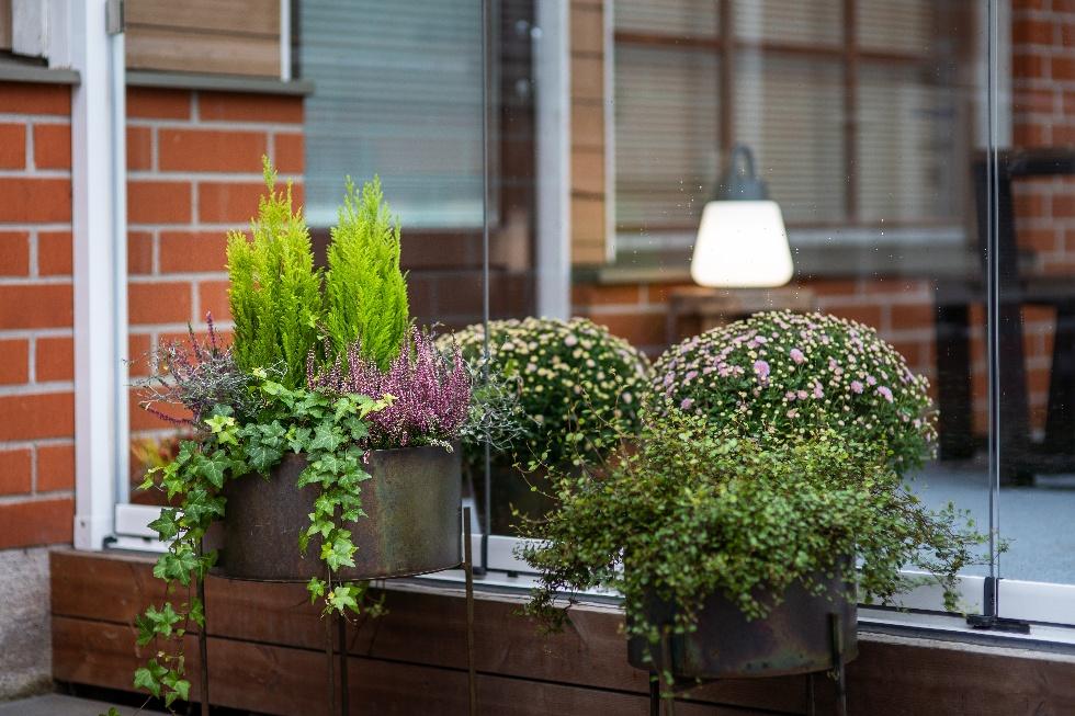 Lasiterassilla kasvit pysyvät pitkään hyvinä