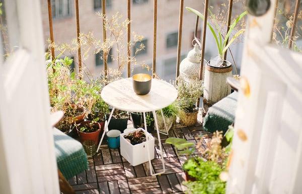 terraza-plantas
